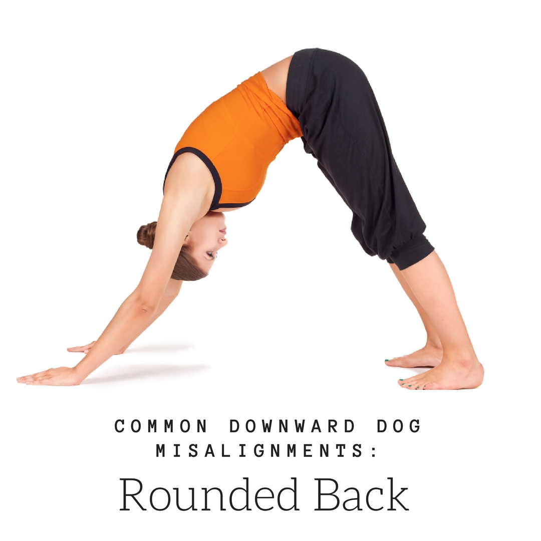 A woman in downward facing dog (Adho Mukha Svanasana) with a common misalignment: rounded back