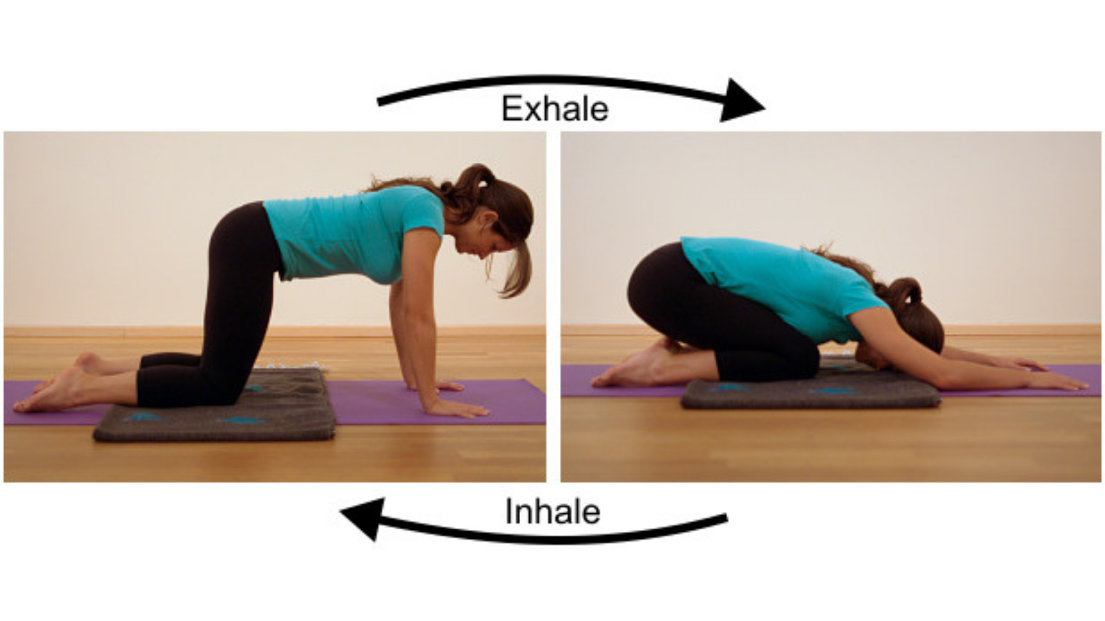 w to experience the benefits of Cat yoga Pose (Chakravakasana) for the spine and back