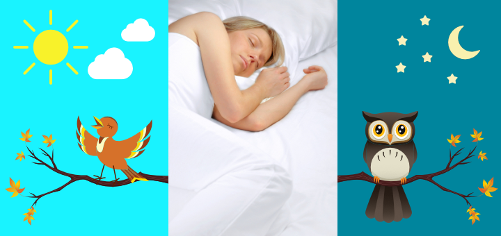 Circadian rhythms, sleep cycles, and times of peak wakefulness are different for everyone
