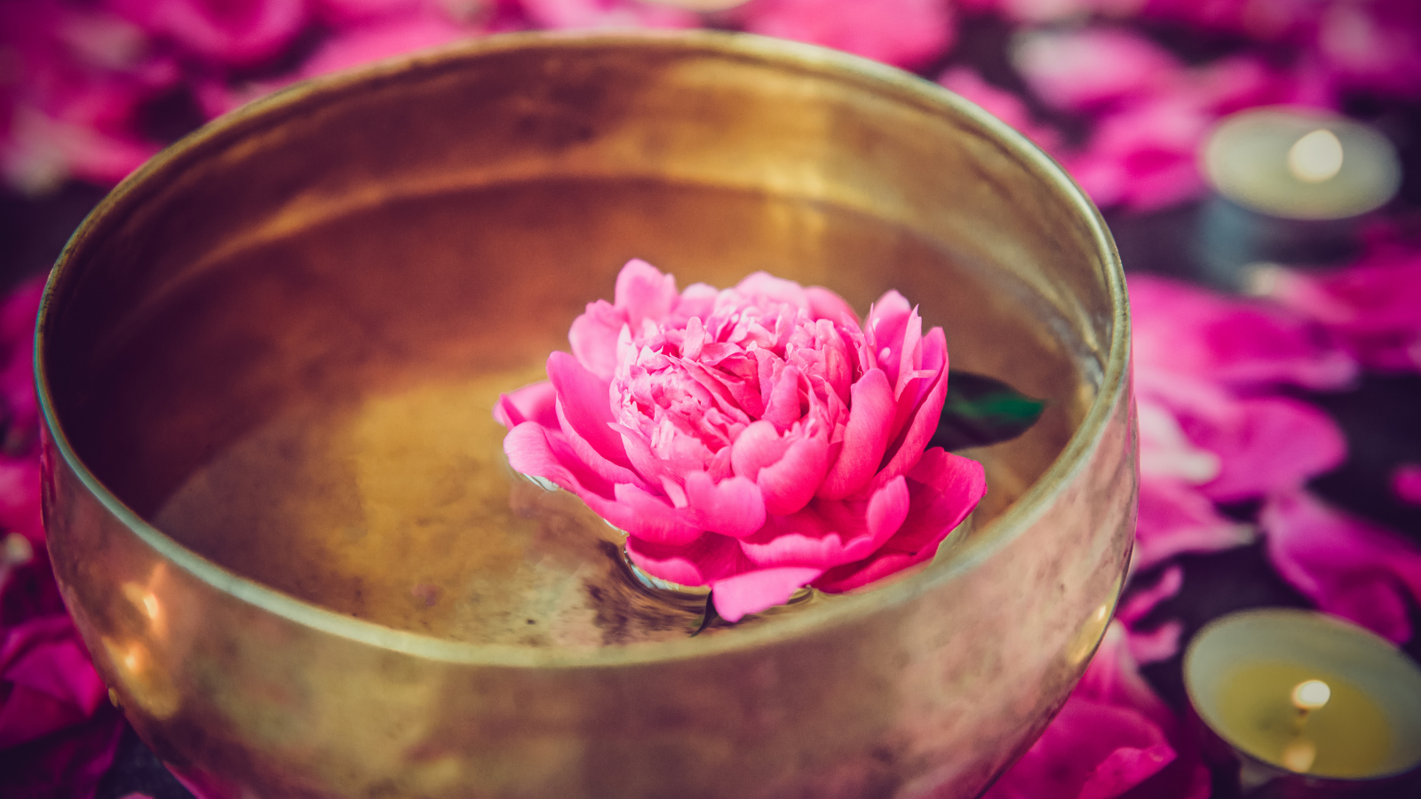 Tibetan singing bowl with floating water lily inside used in the study of the Chakras and Mudras