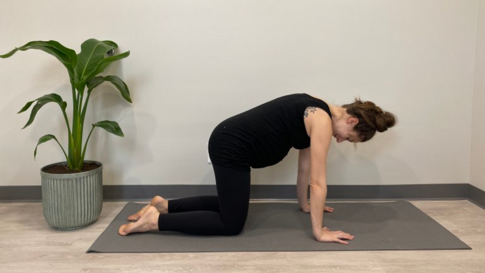 Yoga teaching tips for pregnant students to practice Cat Pose (Marjariasana) for increased spine and pelvis mobility