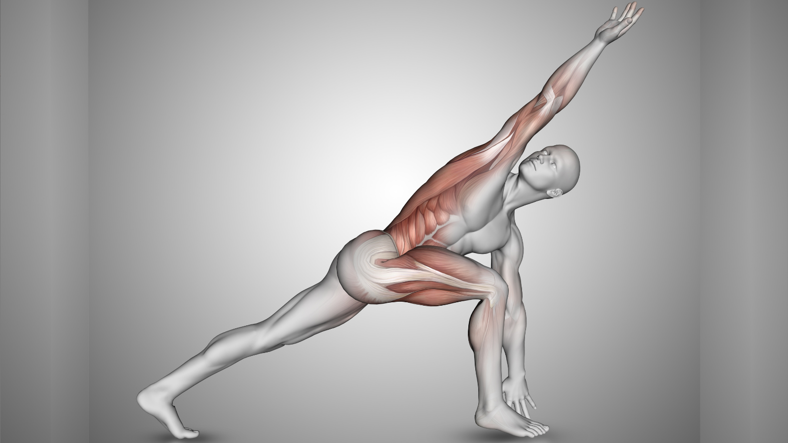 Yoga teacher tips for sharing yoga anatomy with your students
