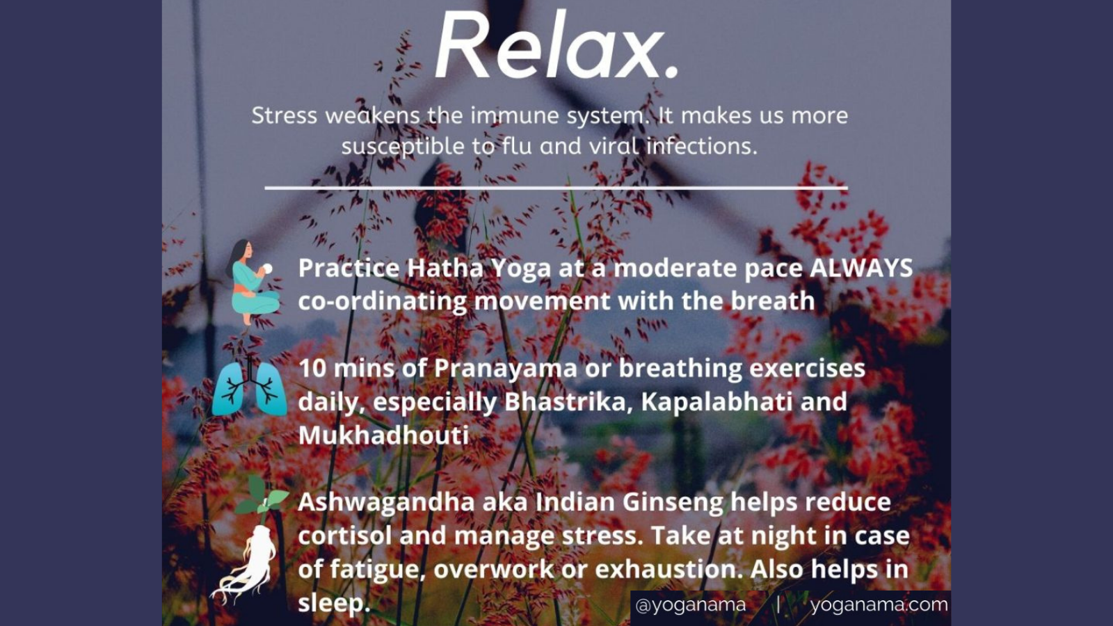 Tips for boosting immunity by minimizing stress and relaxing