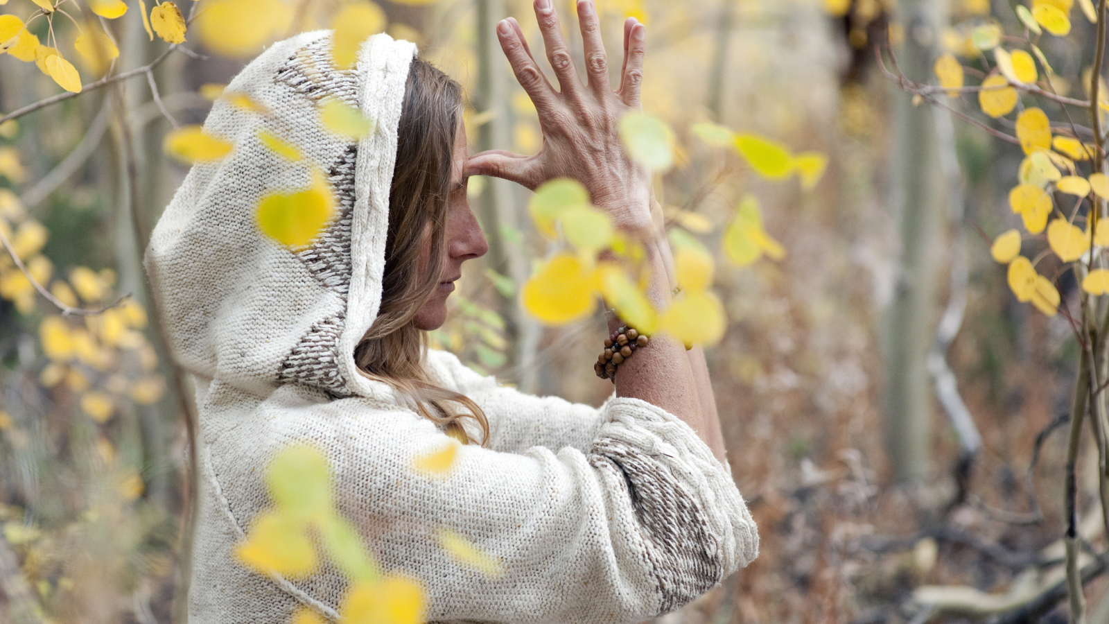 How to practice Thanksgiving gratitude according to yoga philosophy by bowing to all your gurus