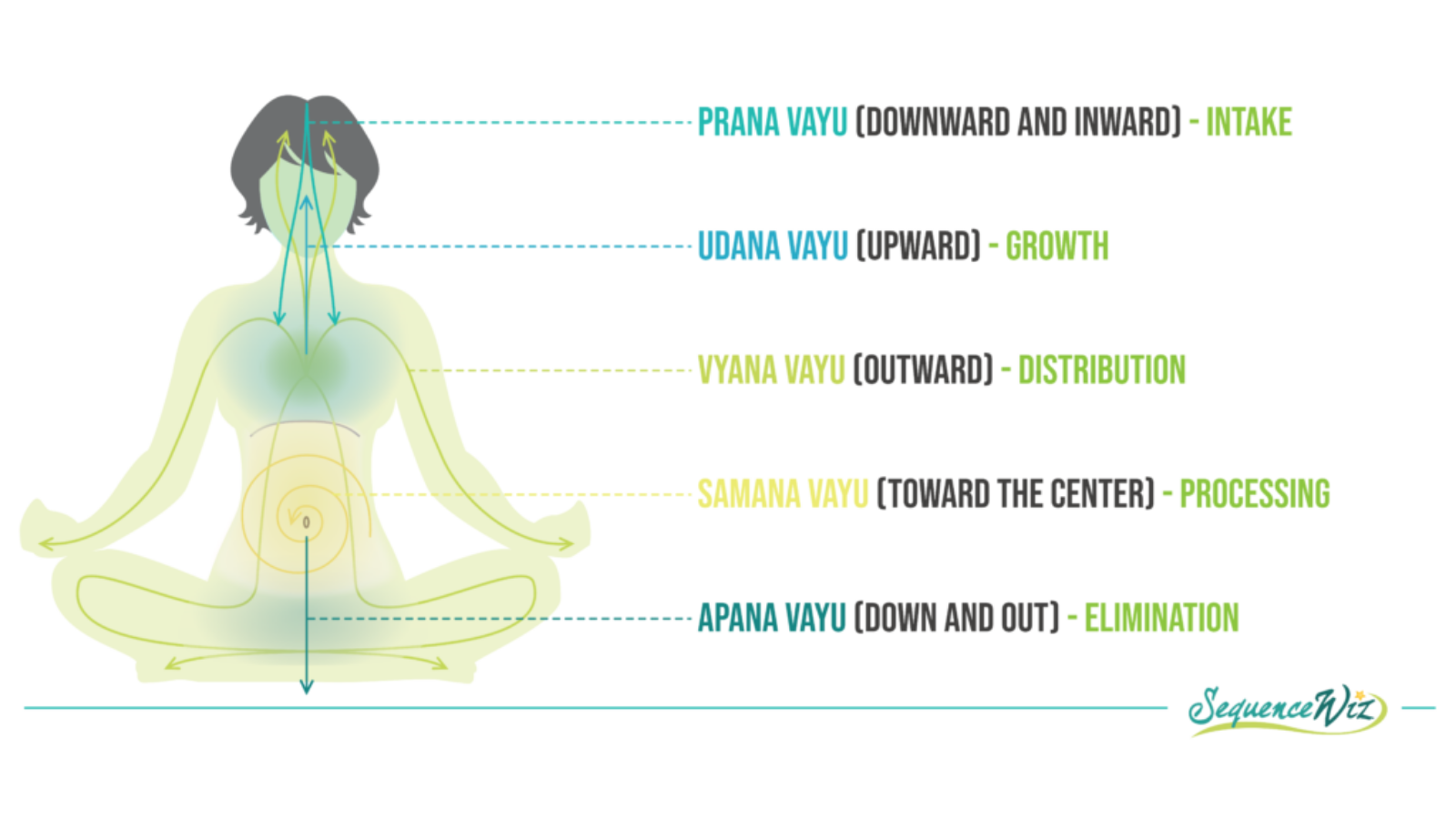 raphic depicting the 5 Pancha Vayas or systems of nourishment in the body