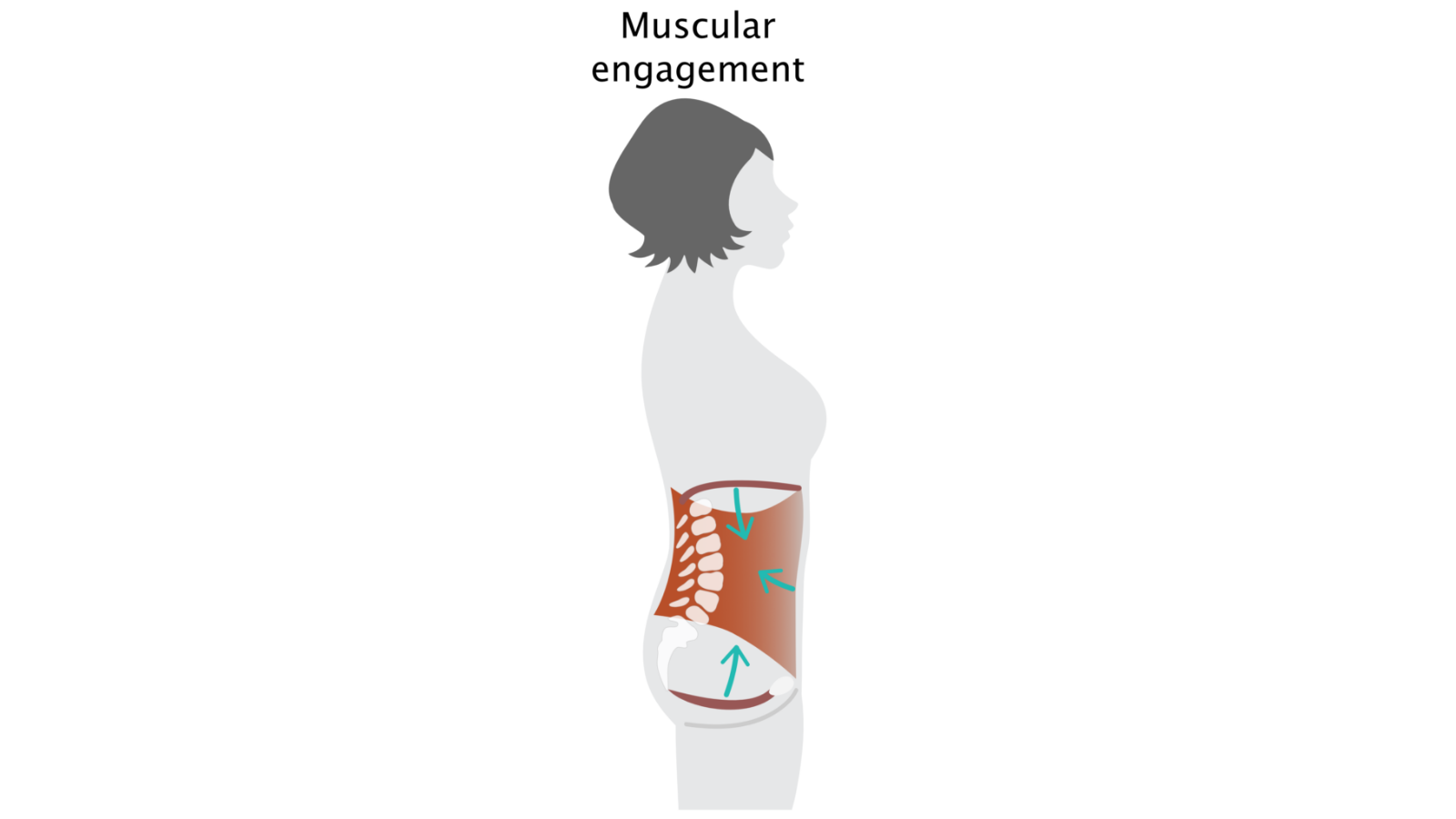 The effects of muscular engagement on the body of a yoga practitioner