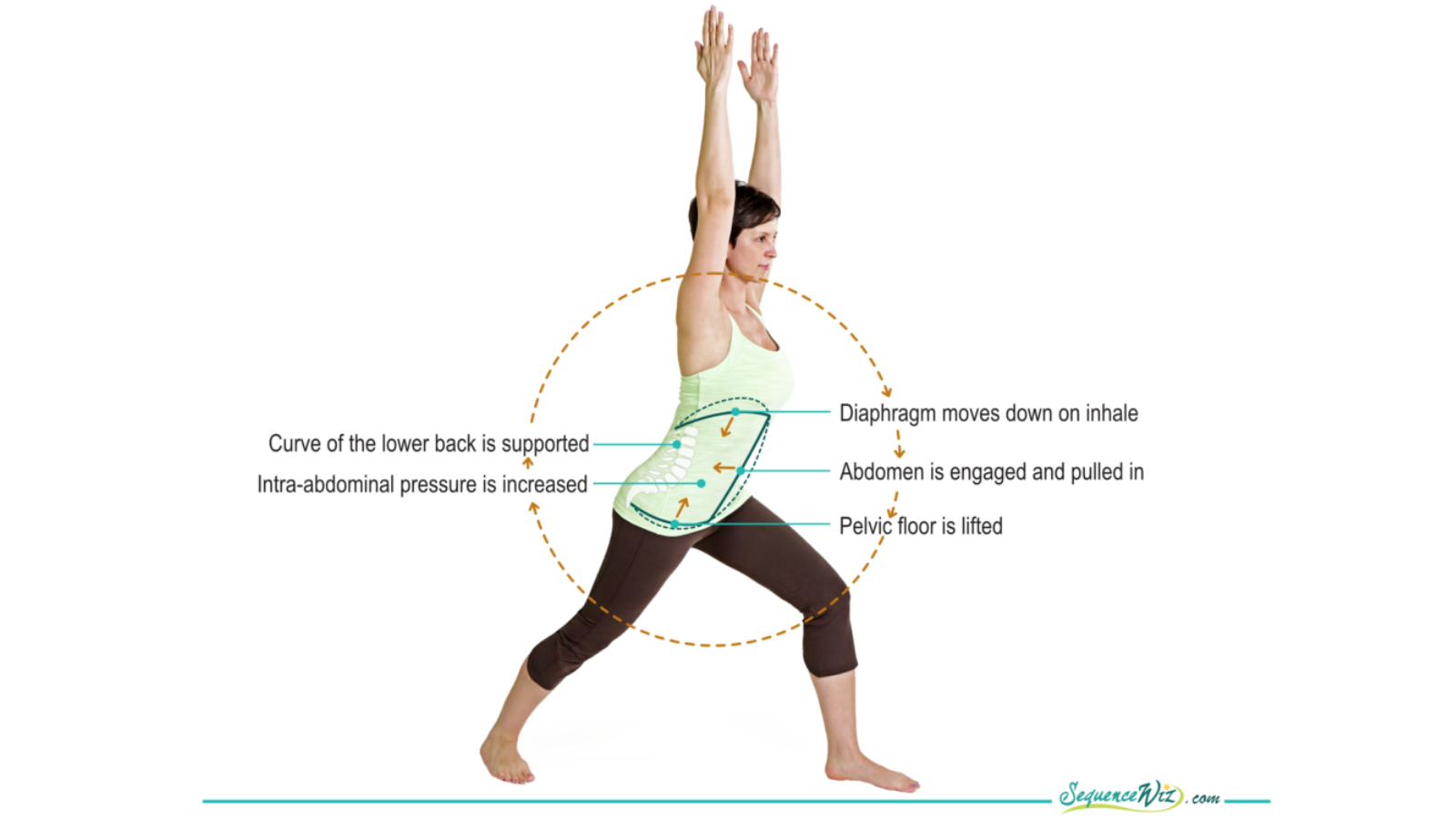 The benefits of practicing yoga for diaphragm health in Warrior II Pose