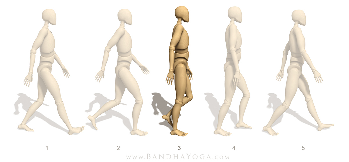 Steps To Stability Refining One Legged Standing Poses Yogauonline