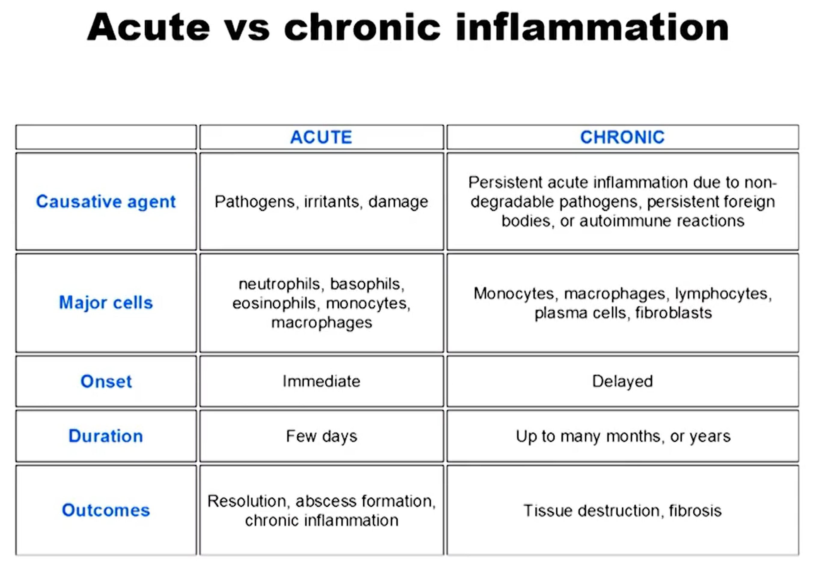 acute vs chronic inflammation, inflammation and long term effects on the body