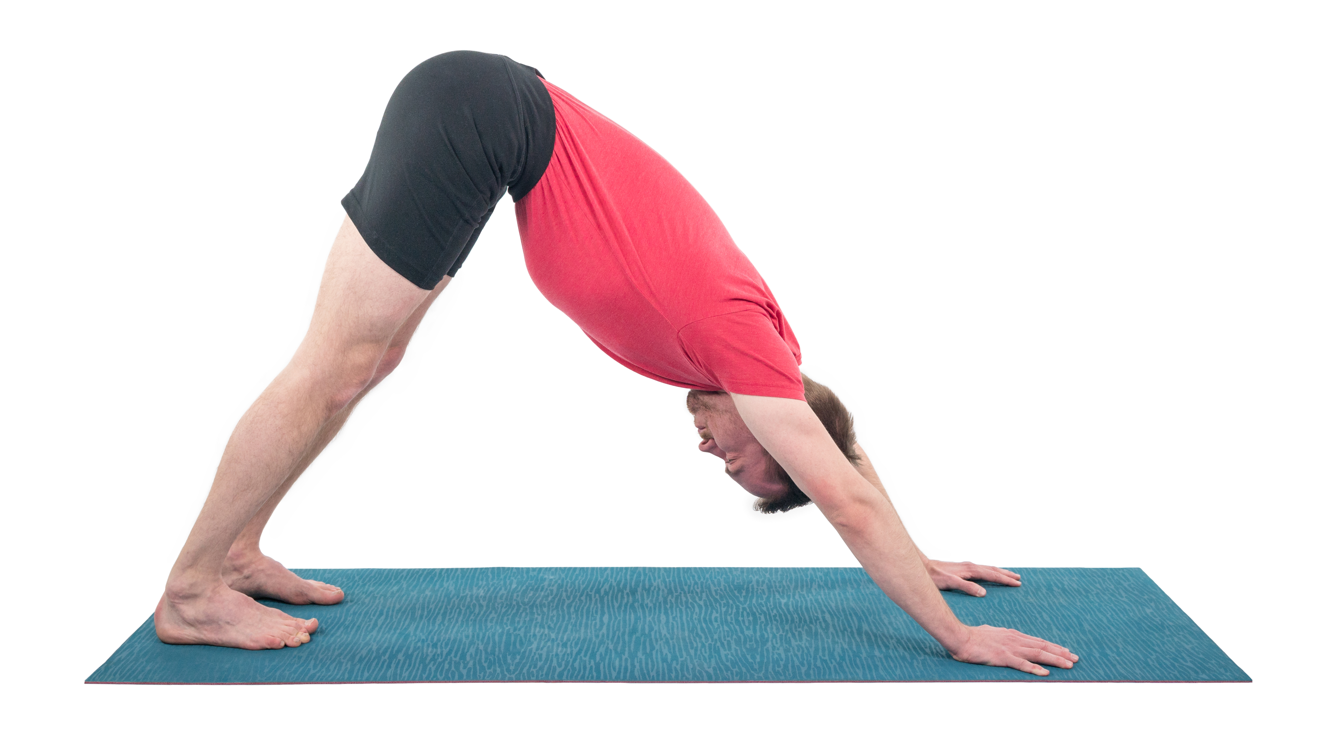 Adho Mukha Svanasana, downward facing dog, inversion pose, pose variations and flowing sequence for change