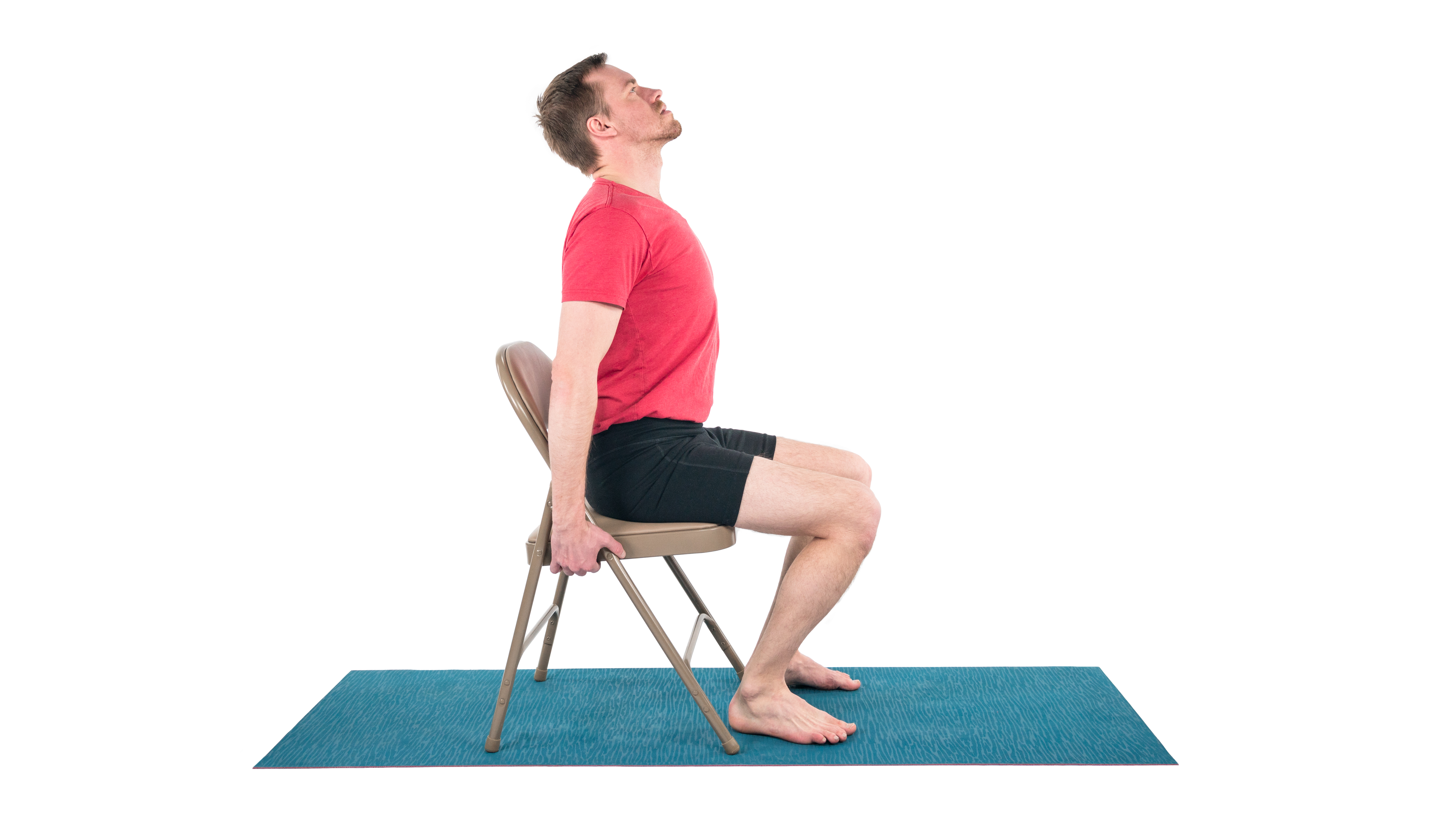 Seated Cat-Cow, Marjarasana/Bitilasana, seated stretch, extension and flexion, flowing with change