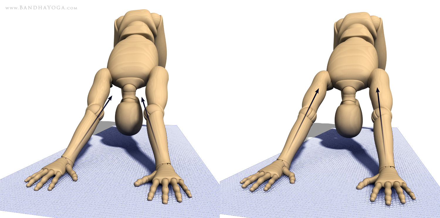 A figure in Downward-Facing Dog Pose (Adho Mukha Shvanasana) showing the direction of force through hyperextended elbows vs aligned elbows