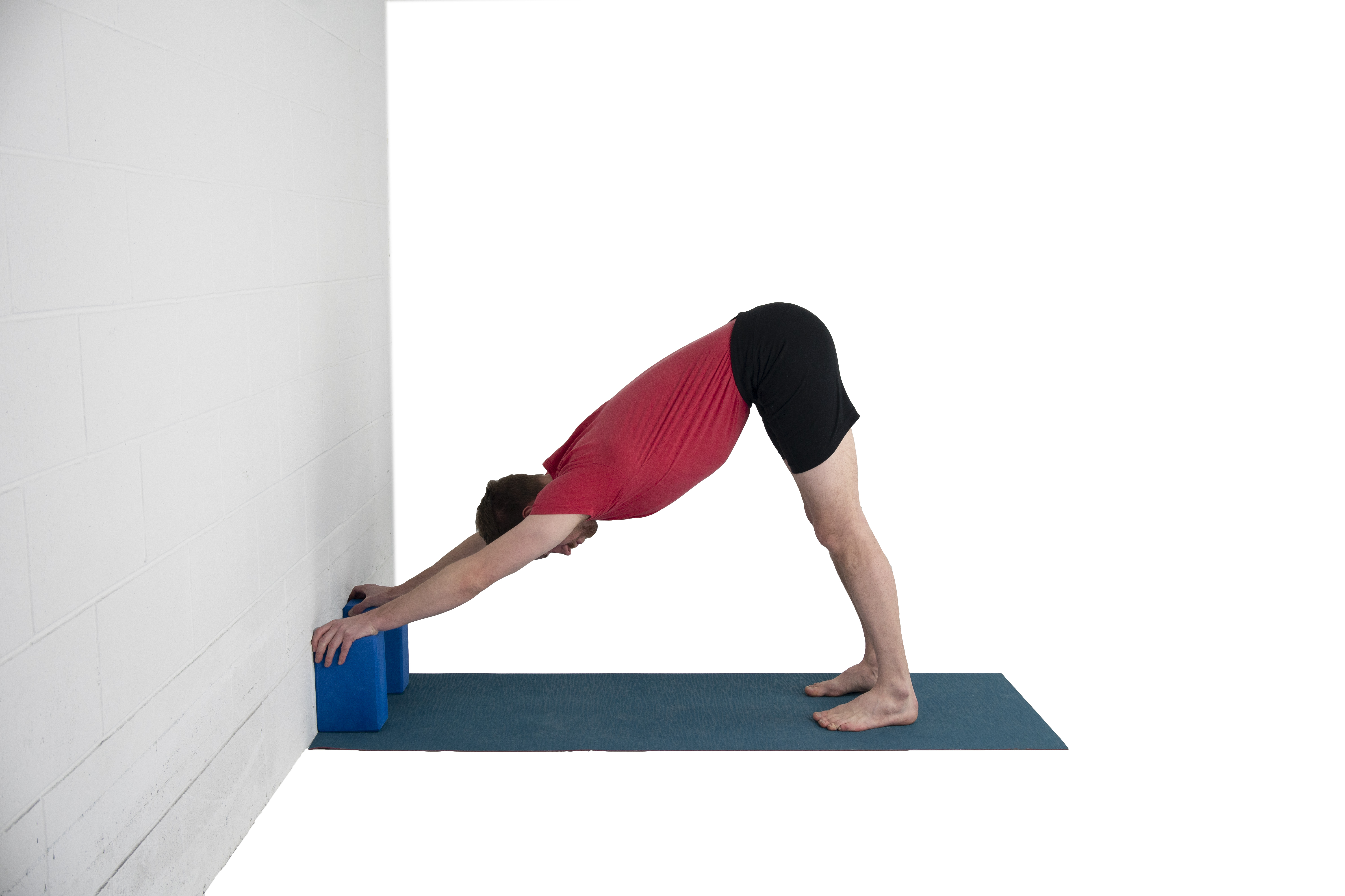 Adho Mukha Svanasana, downward facing dog, inversion, difficult pose, variation with blocks, learn about students in this pose