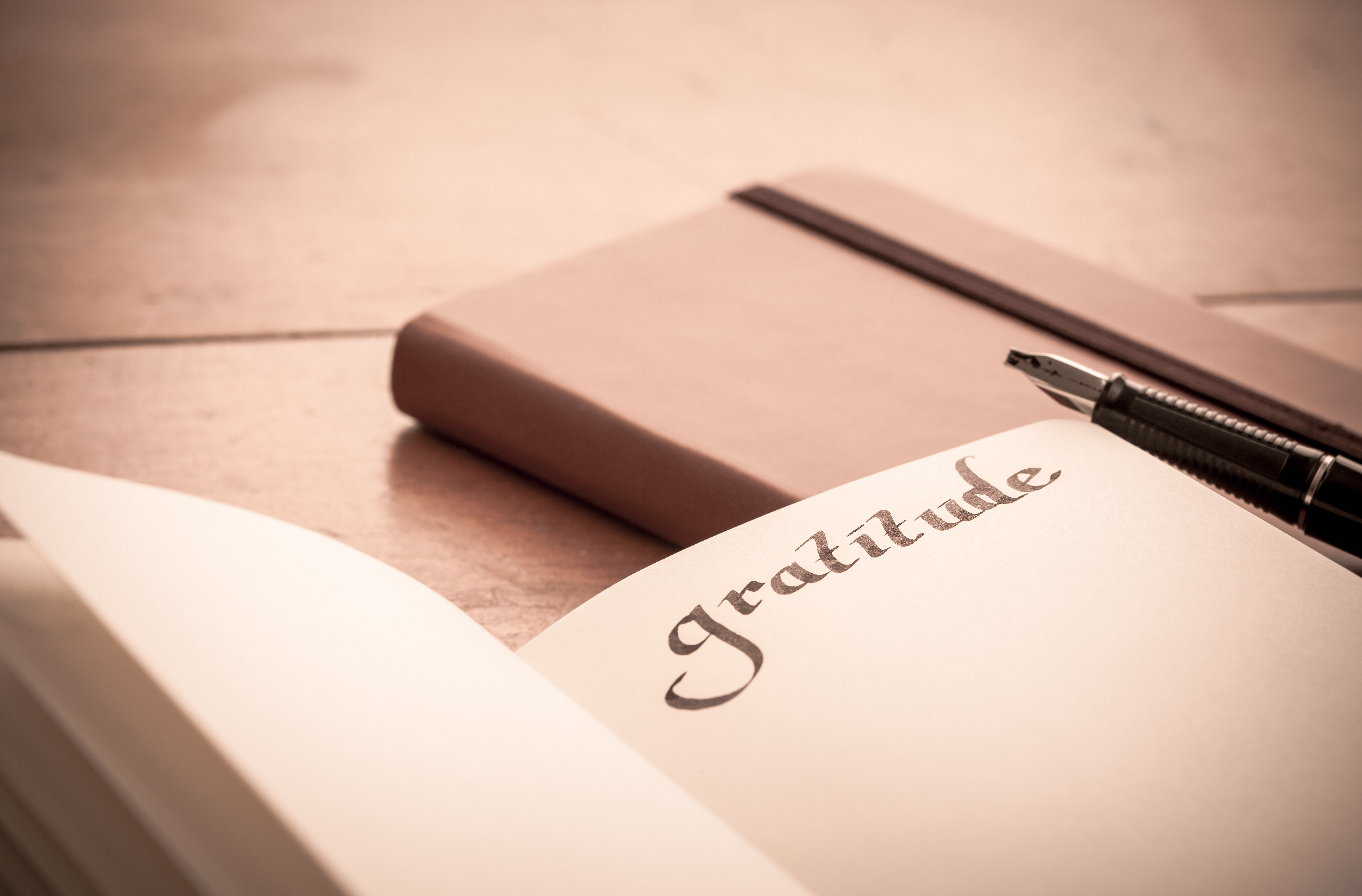 Gratitude journal, blessings small and large, reflections on what we have vs. what we don't have, giving thanks