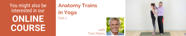 Tom Myers, YogaUOnline presenter, wellness, Anatomy Trains