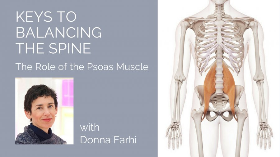 Free Download With Donna Farhi Keys To Balancing The Spine The