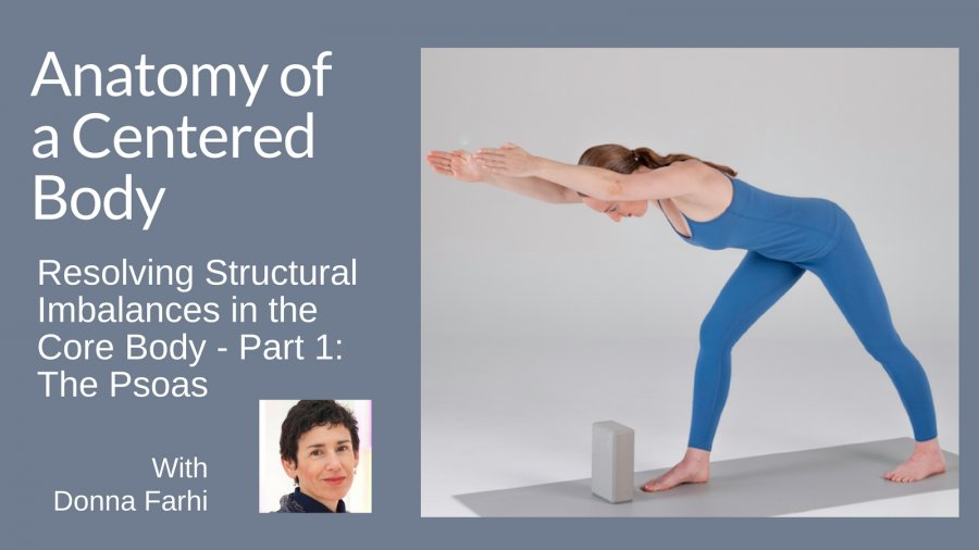 "Online yoga course with Donna Farhi called ""Anatomy of a Centered Body,"" resolving structural imbalances in the core body--part 1: the psoas"