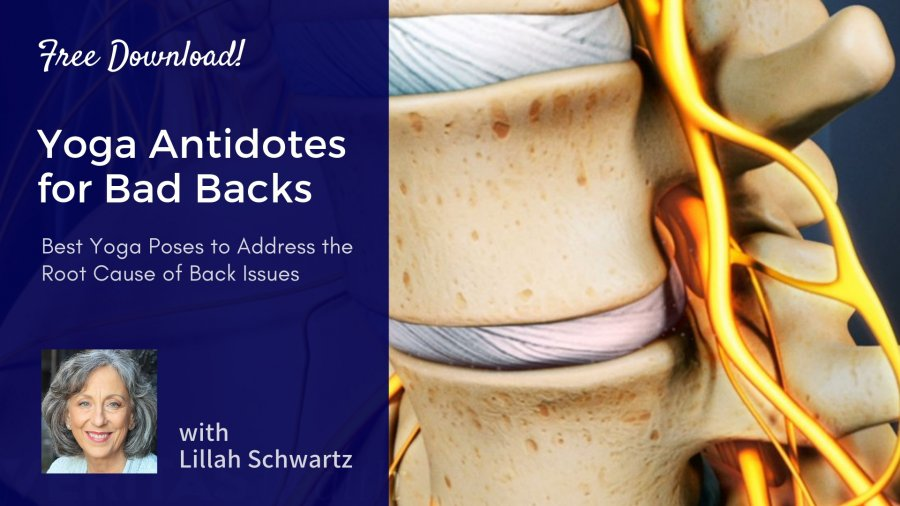 Yoga for a Healthy Back, healthy spine, back health