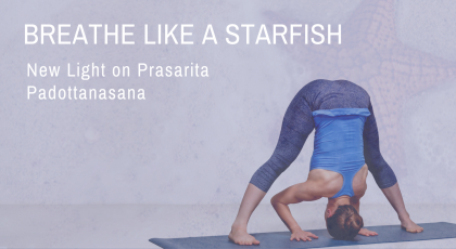 New Light on Prasarita Padottanasana