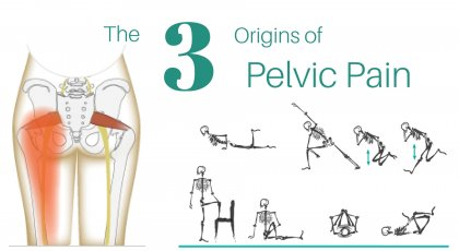 An anatomical diagram of the origin of pelvic pain (a literal pain in the butt) and several yoga moves you can do to stretch the area