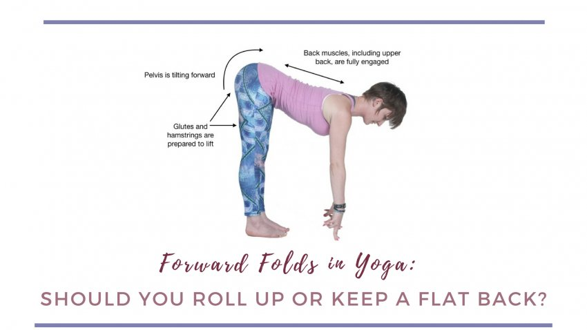 diagram showing woman with correct alignment lifting up from forward fold yoga pose