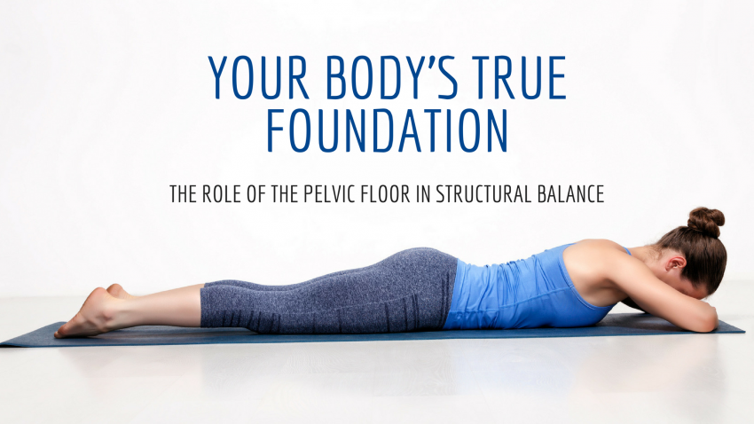 Your Body's True Foundation: The Role of the Pelvic Floor in