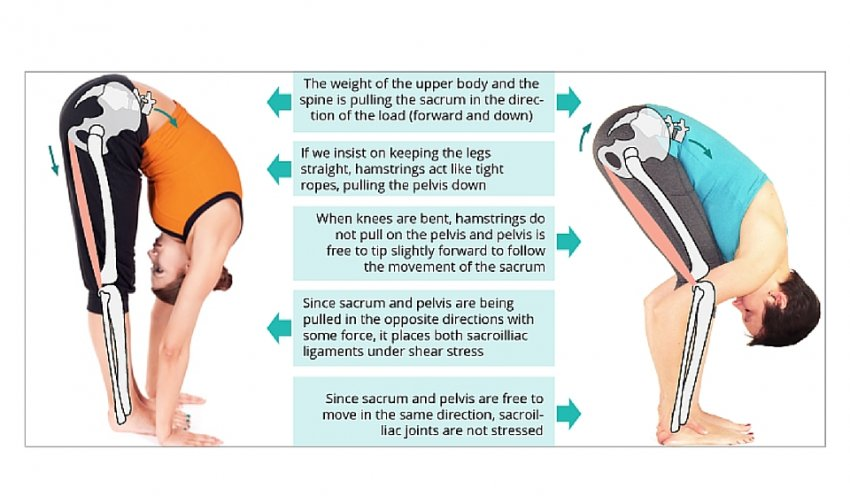 yoga for back pain: tips for maintaining si joint health   yogauonline, Human Body