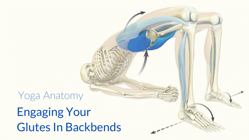 Glutes in Backbends