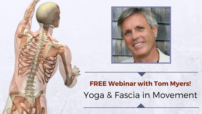 The Role Of Fascia In Yoga And Movement Free Webinar Series With